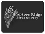 raptors_ridge_birds_of_prey_large