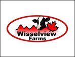 wiesselview_large